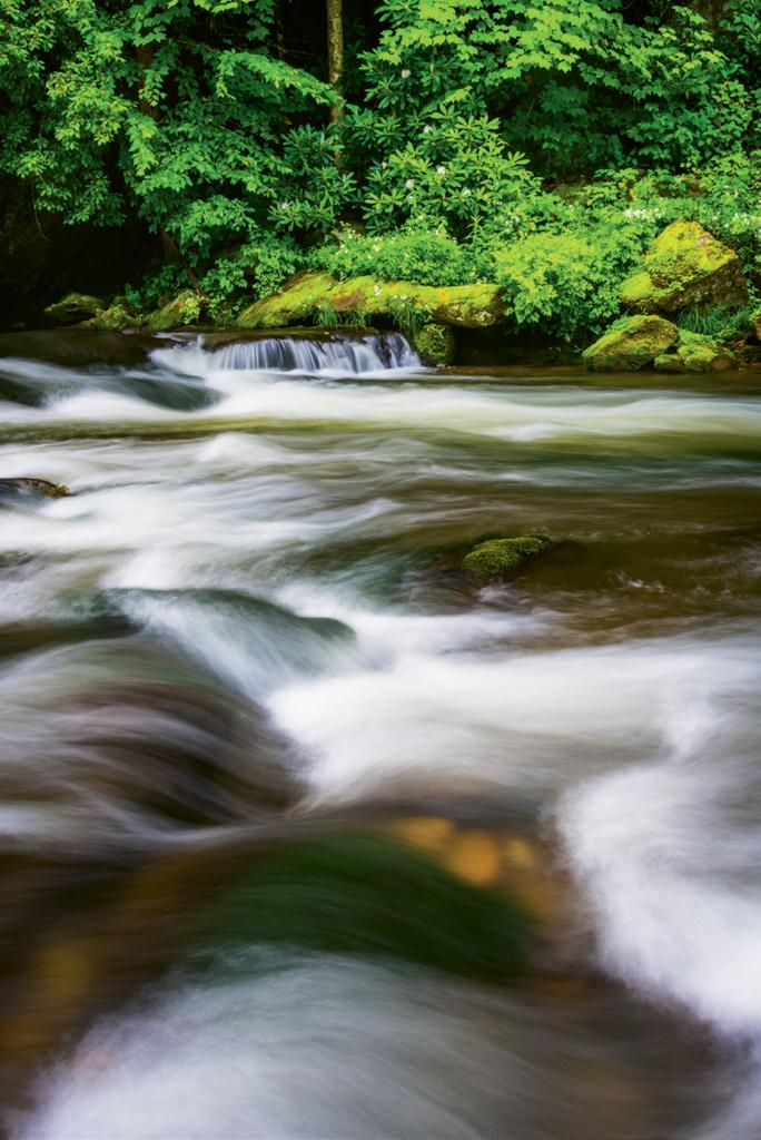 7. Raven Fork River