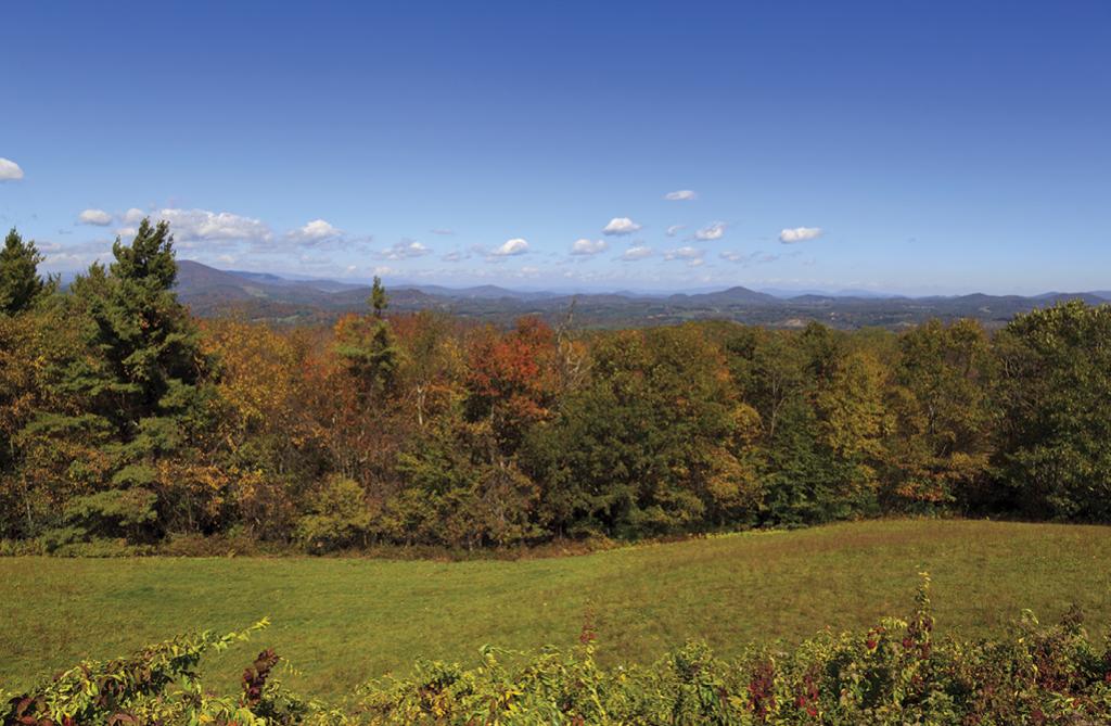 Mount Jefferson overlook