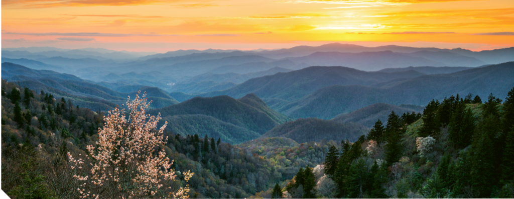 Top Scenic Mountain Views:  1. Waterrock Knob
