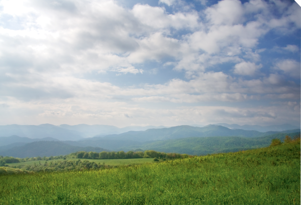6. Max Patch