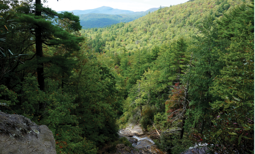 A view from Glen Falls in Nantahala National Forest. Established in 1920, it encompasses more than half a million acres.