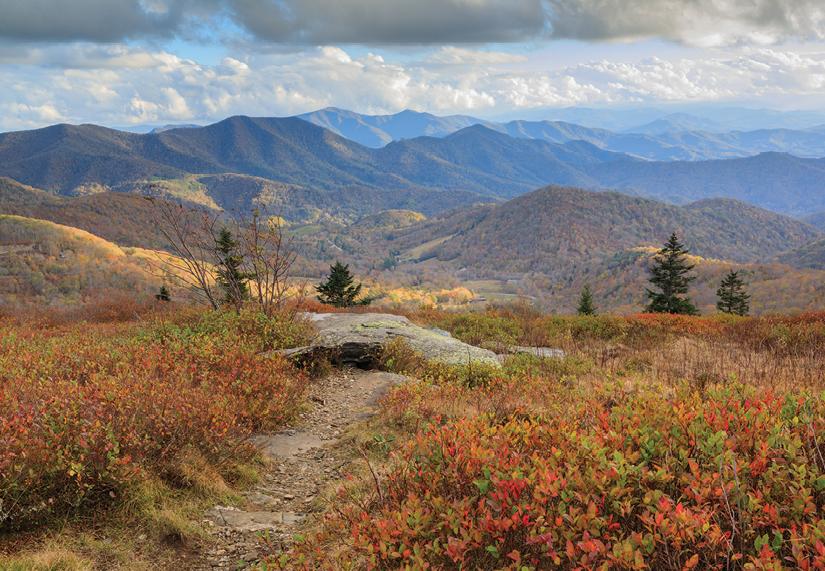 Roan Mountain is a five-mile ridgetop offering 360-degree views.