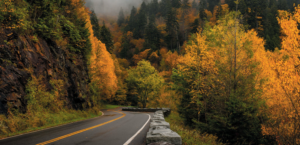 Newfound Gap Road. Photo courtesy of Shutterstock/Larry Knupp