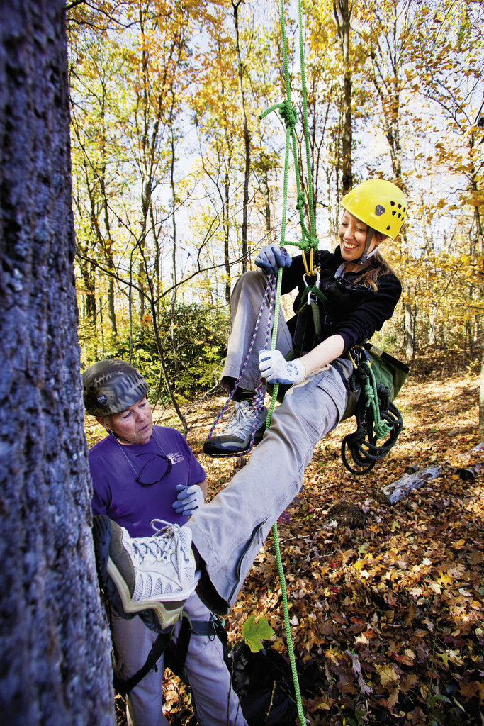 Bob Wray, who's been  tree climbing for 11 years, shows writer  Melissa Smith the ropes. His business, Blue Ridge Tree Climbing,