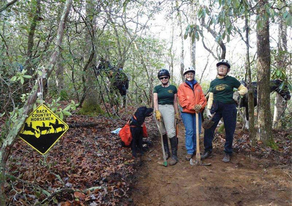 Volunteers clear horseback riding trails.